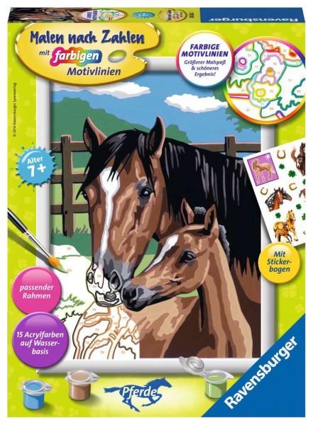 Malen nach Zahlen - Pferd mit Fohlen