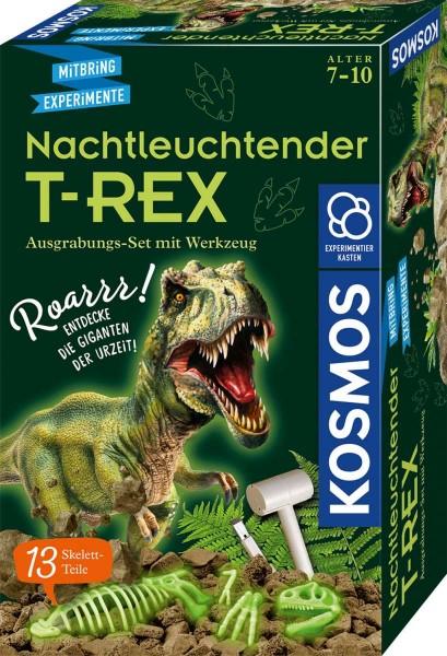 T-REX nachtleuchtend Ausgrabungs-Set