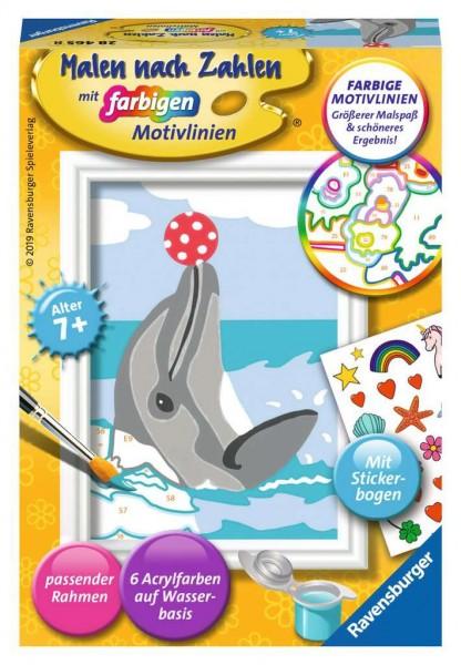 Malen nach Zahlen - Delfin