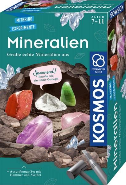 Mineralien Ausgrabungs-Set Experimentierkasten