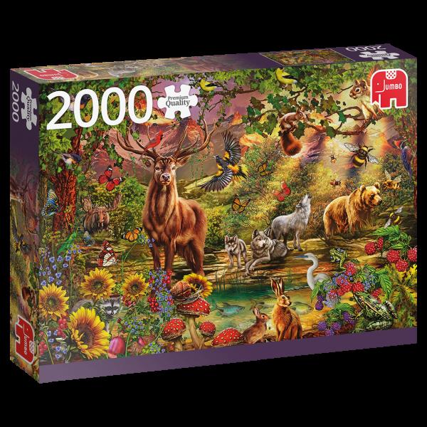 PC Magic Forest at Sunset 2000pcs