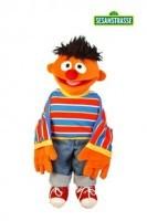 kleiner Ernie 45 cm