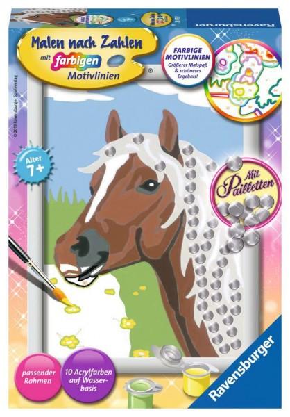 Malen nach Zahlen - Pferd